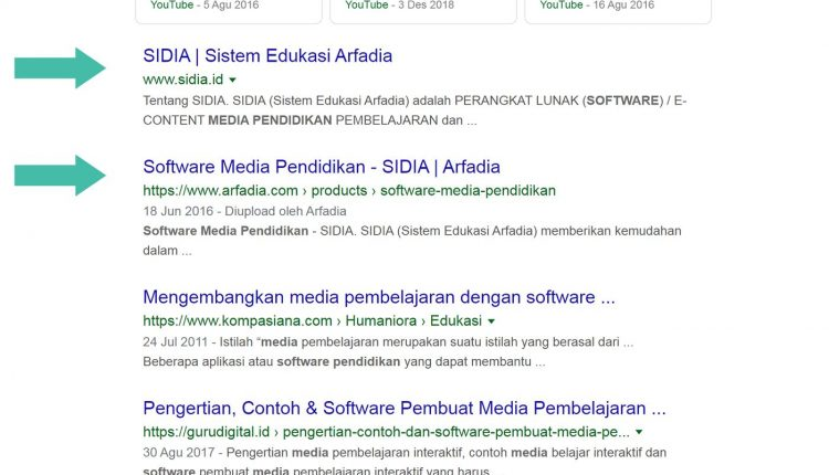 Jasa-SEO-Profesional-dominasi-Google