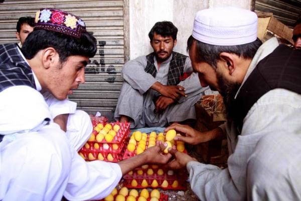 Tradisi Unik Tanding Telur Untuk Rayakan Lebaran di Afghanistan